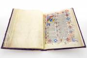 Grandes Heures du duc de Berry, Paris, Bibliothèque Nationale de France, Ms. Lat. 919 Paris, Musée du Louvre, RF 2835 − Photo 8