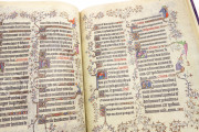 Grandes Heures du duc de Berry, Paris, Bibliothèque Nationale de France, Ms. Lat. 919 Paris, Musée du Louvre, RF 2835 − Photo 10