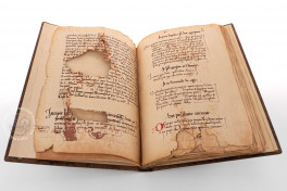 Book of Prophecies Facsimile Edition