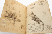 Codex on the flight of birds, Turin, Biblioteca Reale di Torino − Photo 7