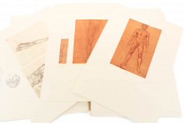 Corpus of the Anatomical Studies (Collection) Facsimile Edition