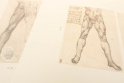 Corpus of the Anatomical Studies (Collection), Windsor, Royal Library at Windsor Castle − Photo 12