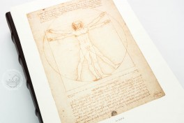 Drawings of Leonardo da Vinci and his circle - Gallerie dell'Accademia in Venice Facsimile Edition