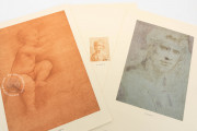 Drawings of Leonardo da Vinci and his circle - Biblioteca Reale , Turin, Biblioteca Reale di Torino − Photo 5