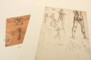 Drawings of Leonardo da Vinci and his circle - Biblioteca Reale , Turin, Biblioteca Reale di Torino − Photo 8