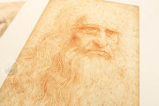 Drawings of Leonardo da Vinci and his circle - Biblioteca Reale , Turin, Biblioteca Reale di Torino − Photo 11