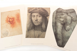 Drawings of Leonardo da Vinci and his circle - Public Collections in France (Collection) Facsimile Edition
