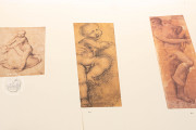 Drawings of Leonardo da Vinci and his circle - Public Collection, Multiple Locations − Photo 7