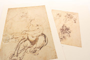 Drawings of Leonardo da Vinci and his circle - Public Collection, Multiple Locations − Photo 9
