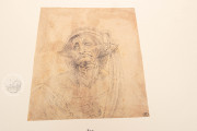 Drawings of Leonardo da Vinci and his circle - Public Collection, Multiple Locations − Photo 29