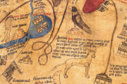 Hereford World Map: Mappa Mundi, Hereford, Hereford Cathedral − Photo 15