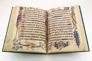Luttrell Psalter, Add. Ms. 42130 - British Library (London, United Kingdom) − photo 4