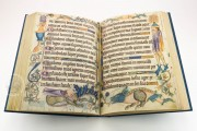 Luttrell Psalter, Add. Ms. 42130 - British Library (London, United Kingdom) − photo 11