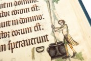 Luttrell Psalter, Add. Ms. 42130 - British Library (London, United Kingdom) − photo 14