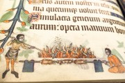 Luttrell Psalter, Add. Ms. 42130 - British Library (London, United Kingdom) − photo 20