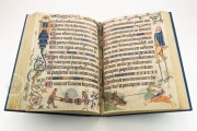 Luttrell Psalter, Add. Ms. 42130 - British Library (London, United Kingdom) − photo 21