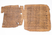 Bodmer VIII Papyrus - Epistles of St. Peter, P72 - Biblioteca Apostolica Vaticana (State of the Vatican City) − photo 8