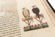 The Art of Falconry by Frederick II - De Arte Venandi Cum Avibus, Vatican City, Biblioteca Apostolica Vaticana, Pal. Lat. 1071 − Photo 24