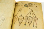 Codex Amiatinus, Florence, Biblioteca Medicea Laurenziana, ms. Laurenziano Amiatino 1 − Photo 18