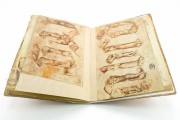 Sketch Book of Giovannino de Grassi, Ms. VII. 14 - Biblioteca Civica Angelo Mai (Bergamo, Italy) − photo 18