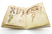 Sketch Book of Giovannino de Grassi, Ms. VII. 14 - Biblioteca Civica Angelo Mai (Bergamo, Italy) − photo 24