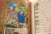 The Barberini Book of Hours for Rouen, Vatican City, Biblioteca Apostolica Vaticana, Barb. lat. 487 − Photo 5