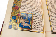 The Barberini Book of Hours for Rouen, Vatican City, Biblioteca Apostolica Vaticana, Barb. lat. 487 − Photo 14