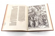 Apocalypse with Pictures by Albrecht Dürer, Incunable nº 1 - Biblioteca Nacional de España (Madrid, Spain) − Photo 15