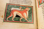 St. Petersburg Bestiary, St. Petersburg, National Library of Russia, Lat. Q. v. V. N. I. − Photo 6