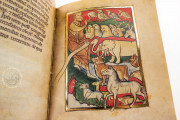 St. Petersburg Bestiary, St. Petersburg, National Library of Russia, Lat. Q. v. V. N. I. − Photo 14