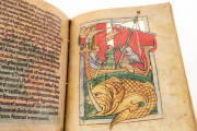 St. Petersburg Bestiary, St. Petersburg, National Library of Russia, Lat. Q. v. V. N. I. − Photo 19