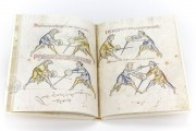 Illuminated Fightbook, London, Royal Armouries, Ms. I.33 − Photo 3