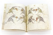 Illuminated Fightbook, London, Royal Armouries, Ms. I.33 − Photo 4