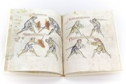 Illuminated Fightbook, London, Royal Armouries, Ms. I.33 − Photo 9