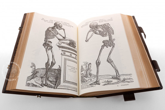 Andreas Vesalius: De Humani Corporis Fabrica, London, British Library, 548.i.2.(1) − Photo 1