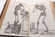 Andreas Vesalius: De Humani Corporis Fabrica, London, British Library, 548.i.2.(1) − Photo 6