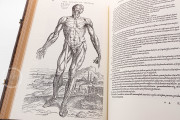 Andreas Vesalius: De Humani Corporis Fabrica, London, British Library, 548.i.2.(1) − Photo 12