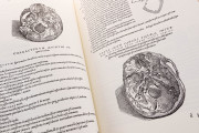 Andreas Vesalius: De Humani Corporis Fabrica, London, British Library, 548.i.2.(1) − Photo 15
