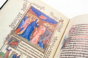 Turin-Milan Hours, Inv. N. 47 - Museo Civico d'Arte Antica (Turin, Italy) − photo 10