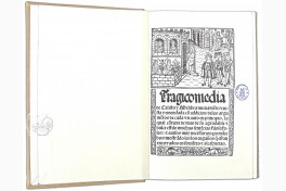 Tragicomedy of Calisto and Melibea and the Old Prostitute Celestina Facsimile Edition