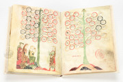 Ramon Llull's Tree of the Philosophy of Love, Palma de Mallorca, Biblioteca Diocesana de Mallorca, F-129 − Photo 5