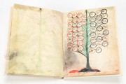 Ramon Llull's Tree of the Philosophy of Love, Palma de Mallorca, Biblioteca Diocesana de Mallorca, F-129 − Photo 10