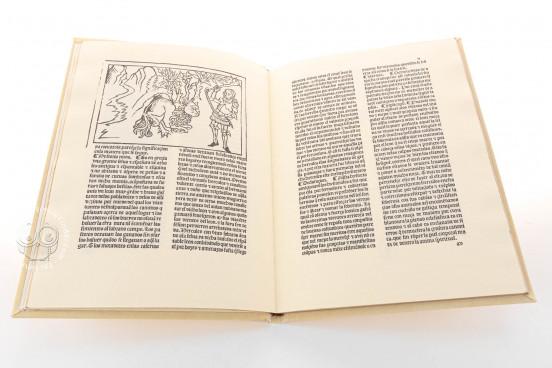 The Twelve Works of Hercules, Inc. 2441 - Biblioteca Nacional de España (Madrid, Spain) − photo 1