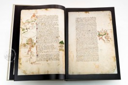 Codex Rustici Facsimile Edition