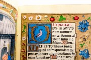 Book of Hours of Alexander VI, Pope Borgia, Bruxelles, Bibliothèque Royale de Belgique, Ms. IV 480 − Photo 21