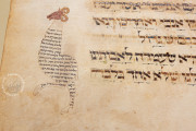 Ashkenazi Haggadah, London, British Library, Add. MS 14762 − Photo 12