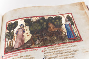 Divine Comedy from the Biblioteca Angelica in Rome, Rome, Biblioteca Angelica, Ms. 1102 − Photo 8