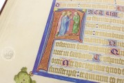 Gospels of John of Opava, Cod. 1182 - Österreichische Nationalbibliothek (Vienna, Austria) − Photo 19