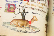 The Mirandola Hours, London, British Library, Add MS 50002 − Photo 7