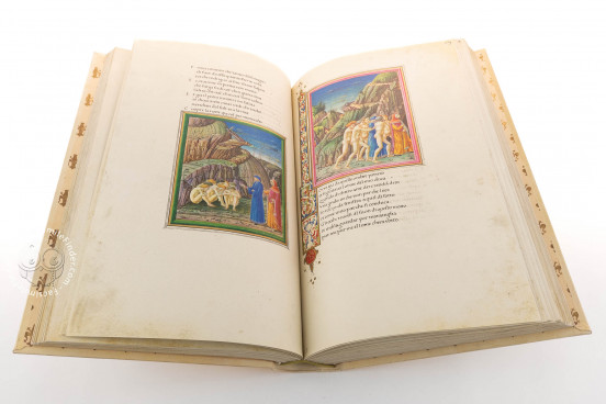 Dante Urbinate, Vatican City, Biblioteca Apostolica Vaticana, Ms. Urb. lat. 365 − Photo 1